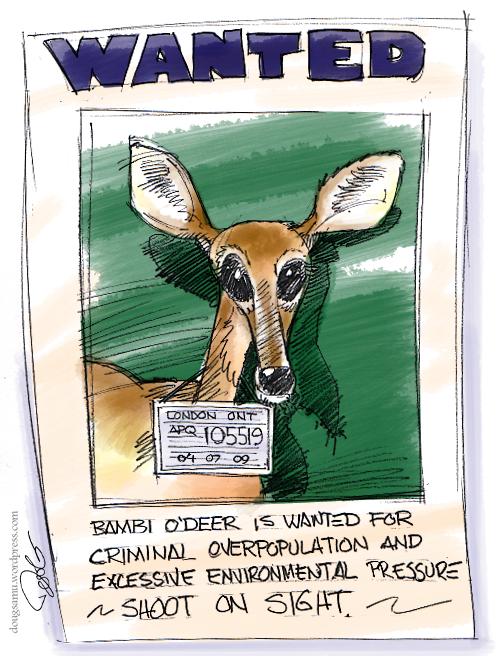 bambi-odeer